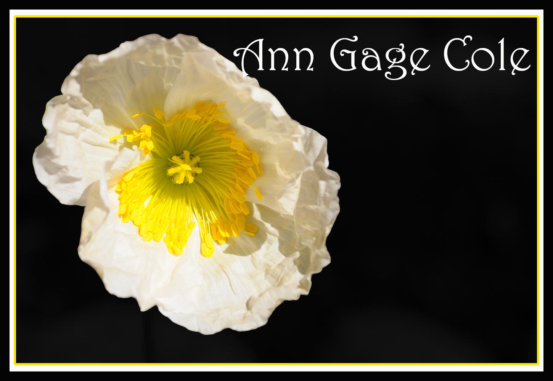 Ann Gage Cole