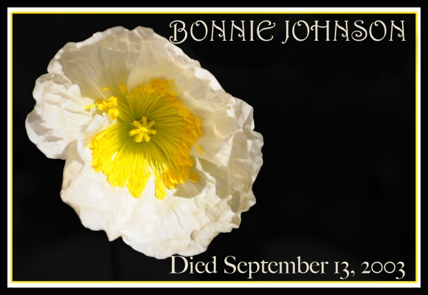 REMEMBERING POPPY Bonnie Johnson 2