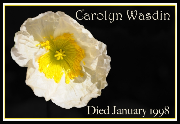 REMEMBERING POPPY Carolyn Wasdin