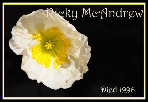 REMEMBERING POPPY 2 Ricky McAndrew FLAT
